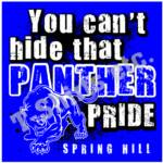 Spring Hill Panthers